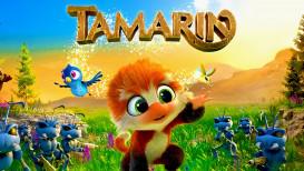 REVIEW | Tamarin wil te veel en biedt te weinig